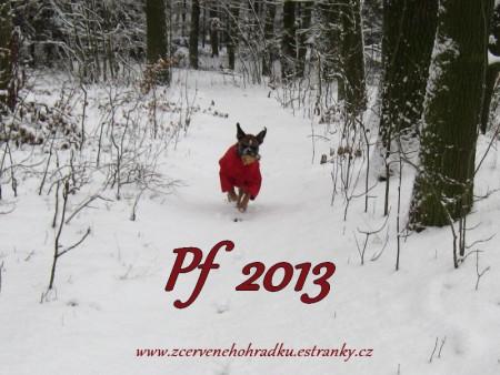 pf-2013-a01.jpg